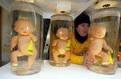 Greenpeace-Protest gegen das Klonen, Foto: AP