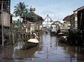 Kalimantan; Foto: Rüdiger Siebert