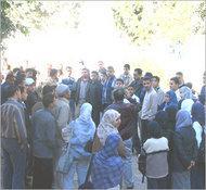 Junge Araber suchen Job; Foto: Yale Global