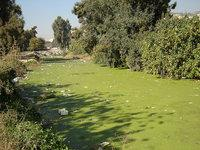Barada in Damaskus; Foto: Baraa Kellizy