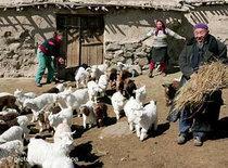 Uigurische Bauernfamilie; Foto: dpa