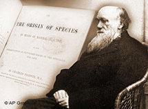 Symbolbild Darwin; Foto: AP