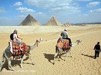 Touristen auf Kamelen, im Hintergrund die Pyramiden von Giseh; Foto: dpa