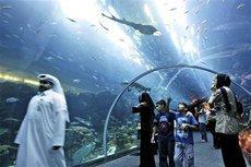 Einkaufszentrum in Dubai mit Aquarium; Foto: AP