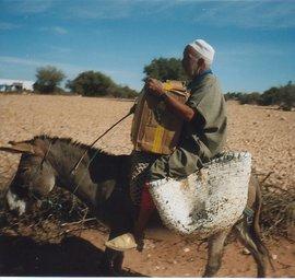 Transport der Bücherkarawane in Marokko; Foto: Regina Keil-Sagawe