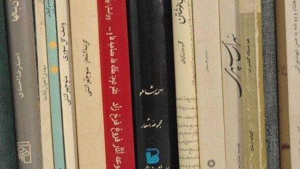 Books by Iranian writers (photo: DW)