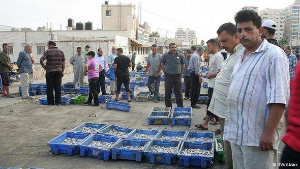 Fischmarkt von Gaza, Foto: DW/Bettina Marx