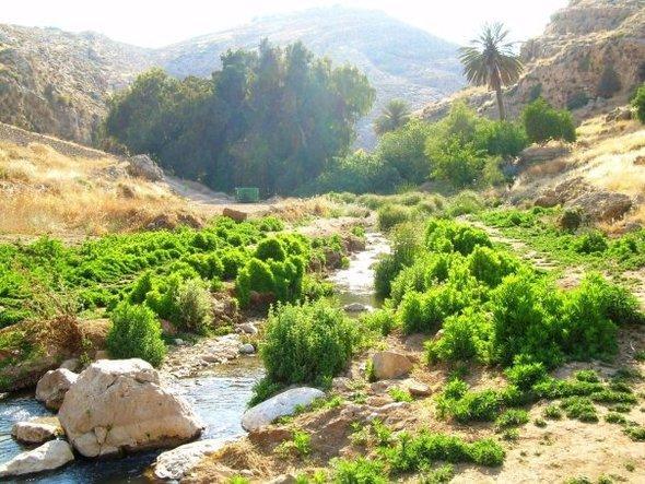 Das Wadi Qelt; Foto: wikipedia
