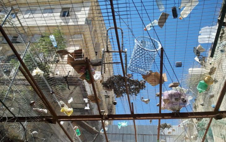 Drahtgeflecht gegen Müll und Unrat militanter Siedler in der Al-Shallalah-Straße in Hebron; Foto: Susanne Kaiser