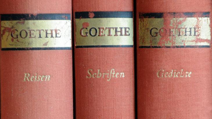Goethe Buchreihe; Foto: Fotolia/Stefan Merkle