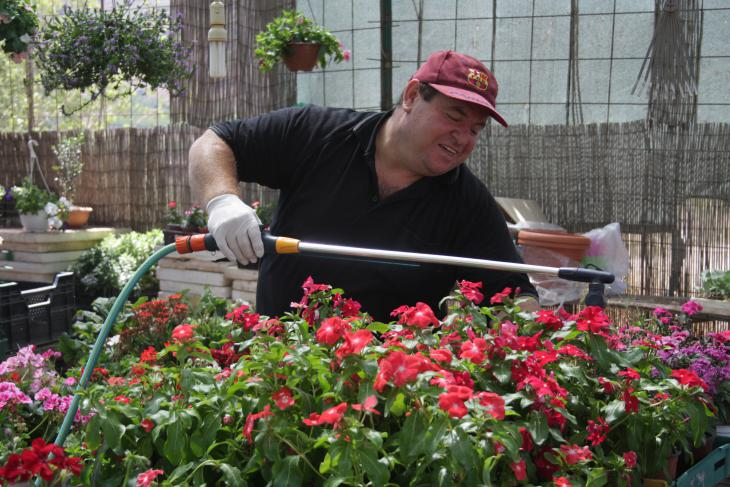 Samir Owidat in his flower shop in Majdal Shams (photo: Ylenia Gostoli)