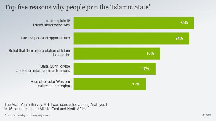 Fünf Beweggründe für arabische Jugendliche, sich dem IS anzuschließen; Quelle: Arab Youth Survey 2016