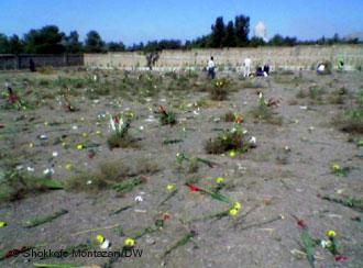 Auf dem Friedhof Khavaran in Teheran befinden sich die Massengräber der politischen Gefangenen, die im Sommer 1988 hingerichtet worden sind; Foto: Shokkofe Montazari/DW
