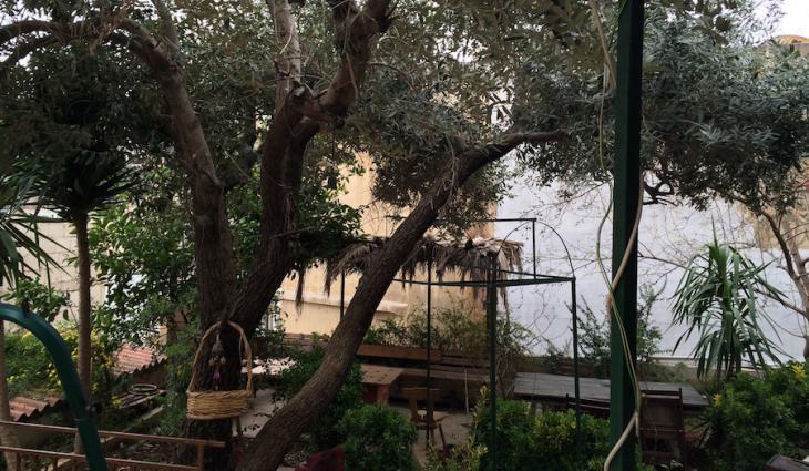 "Blick auf den Innenhof des Cafés ""Naqsh"" in Amman; Foto: Hakim Khatib/MPC Journal"