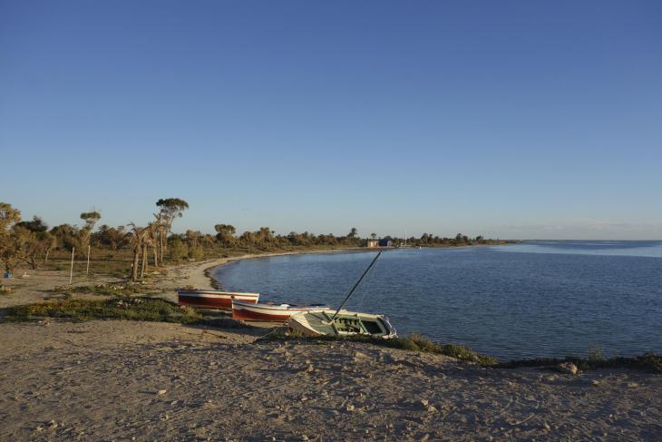 Ein Stück unberührte Küste auf Djerba. Foto: Madeleine Löning
