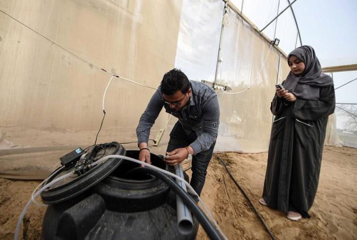 Hydroponik in Gaza; Foto: Afaq