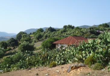 Blick auf das Dorf Joujouka; Foto: Arian Fariborz