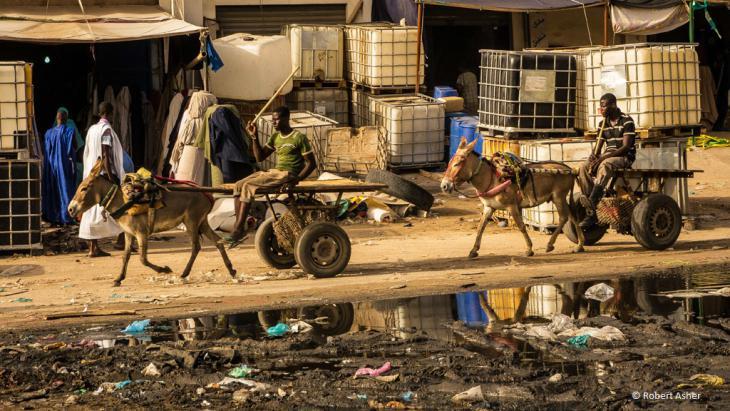 Eselkarren auf einer müllübersäten Straße