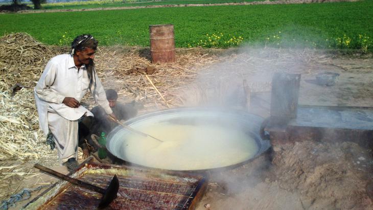 Zuckerherstellung, Bahawalpur, Punjab, Pakistan. Foto: Julis Koch
