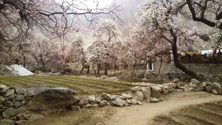 Dorf am Upper Kachura Lake, Skardu, Gilgit-Baltistan, Pakistan. Foto: Julis Koch