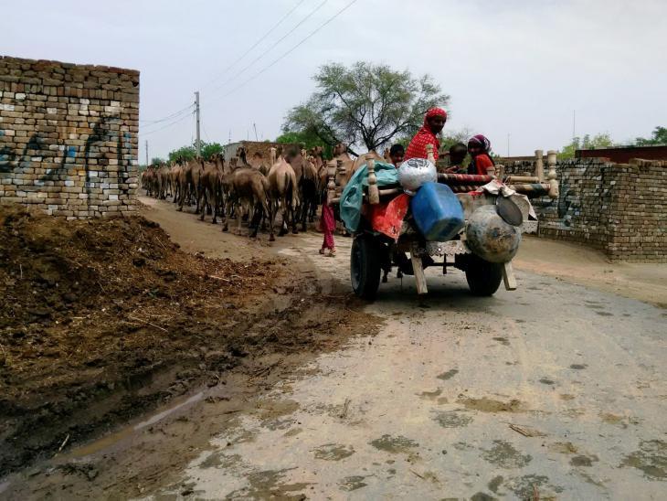 Frau auf Anhänger als Transportmittel, Punjab, Pakistan. Foto: Usman Mahar