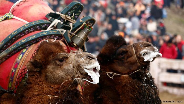 Foto: Reuters/M.Sezer