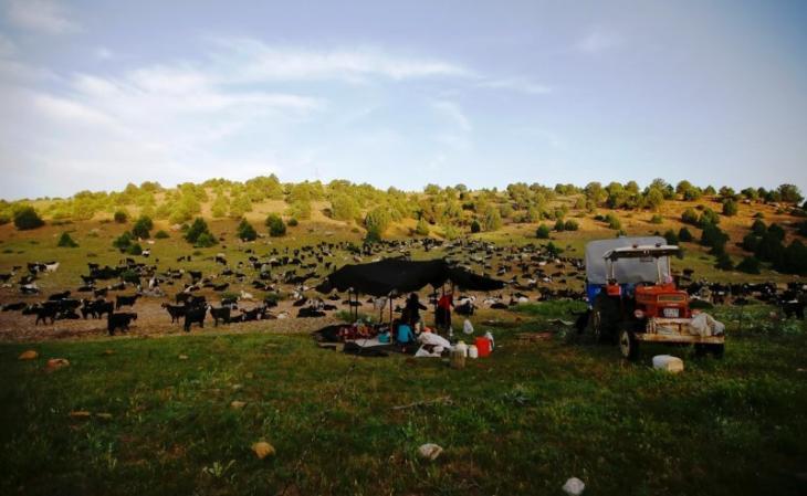 Die Familie Gobut baut ihr Zelt in der Nähe von Konya auf; Foto: Reuters/Osman Orsal