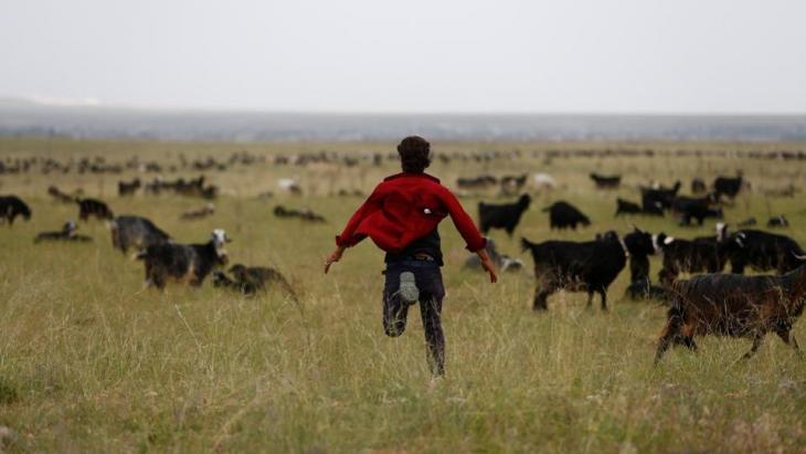 Muhammet Gobut treibt eine Ziegenherde zusammen; Foto: Reuters/Osman Orsal