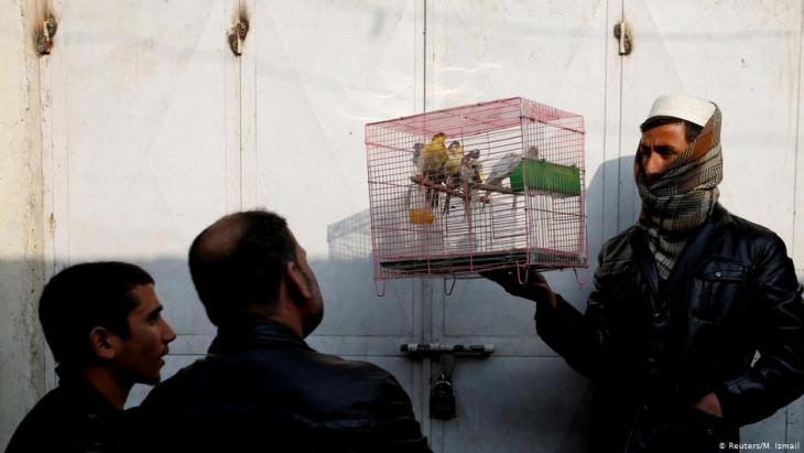 Afghanische Männer betrachten Vögel in einem Käfig auf dem Vogelmarkt Ka Faroshi in Kabul, Afghanistan. Foto: REUTERS/Mohammad Ismail