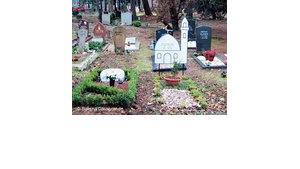 Islamische Gräber auf dem Kölner Westfriedhof, Foto: Sabina Casagrande