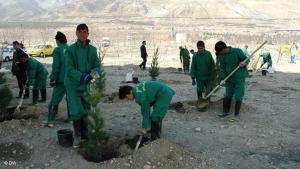 Afghanische Arbeiter im Iran; Foto: Murteza Musawi/DW