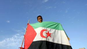 Junge im Flüchtlingscamp Laayoune bei Tindouf hält die Fahne der Republik Westsahara; Foto: dpa/picture-alliance