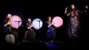 """Persische Musiker aus Isfahan auf dem 10. Musikfestival """"Tamburi Mundi"""" in Freiburg; Foto: Ellen Schmauss"""