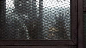 Inhaftierte Al-Jazeera-Journalisten Mohammed Fahmy und Baher Mahmoud vor ihrem Prozess in Kairo; Foto: DW