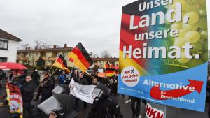 Pegida-Demonstration in Mainz; Foto: picture-alliance/dpa/A. Dedert