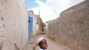 Im Herzen der Stadt, auf einer Fläche von etwa einem Quadratkilometer, lassen sich über 362 kleine Straßen entdecken. Harar ist die Stadt mit der höchsten Konzentration von Moscheen weltweit – allein in der Altstadt gibt es 82 von ihnen.