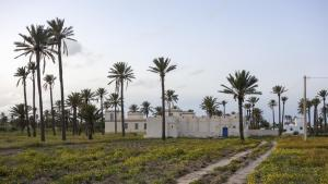 Traditionelle Baustruktur auf Djerba.  (Foto: Philipp Poppitz/Creative Commons 4.0; https://creativecommons.org/licenses/by/4.0/)