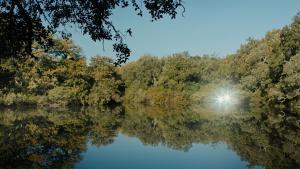 "Filmszene aus ""Tlamess"" des tunesischen Regisseurs Ala Eddine Slim; Quelle: unifrance.org"