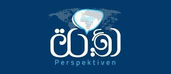 "Logo Online-Magazin ""Perspektiven"""